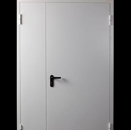 ДПМ-2 EI 60 дверь противопожарная двупольная